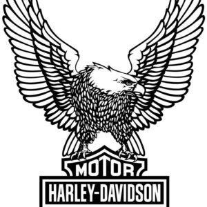 Harley Davidson eagle