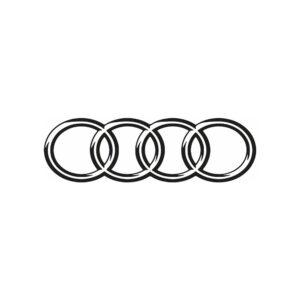 Audi ringen